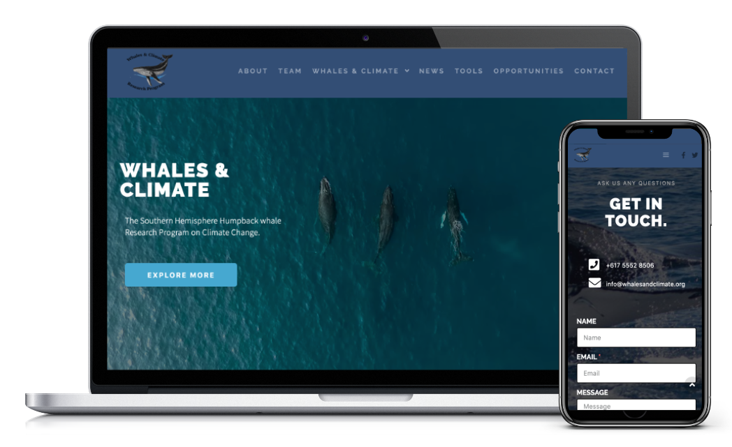 whales and climate website design