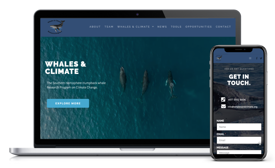 Whales and Climate Website-275x168